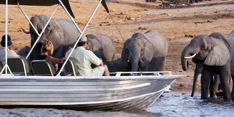 8-Day Three Rivers Safari (Semi-Luxurious/All-Inclusive)