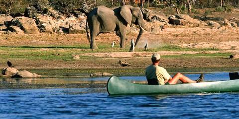 12-Day Best Value Botswana Honeymoon