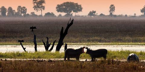 8-Day Caprivi and Victoria Falls - Group Accommodated