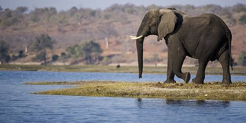 7-Day Falls, Zambezi & Chobe