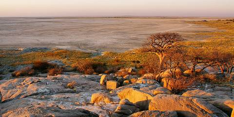 15-Day Let's Go to Kgalagadi in 2021
