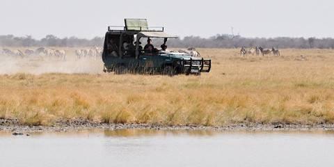 7-Day Botswana Safari Expedition