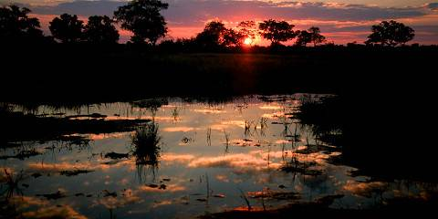 14-Day Best of Botswana Budget Lodge Safari