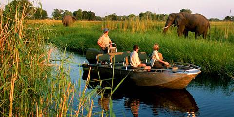 5-Day Botswana Safari - Short and Sweet