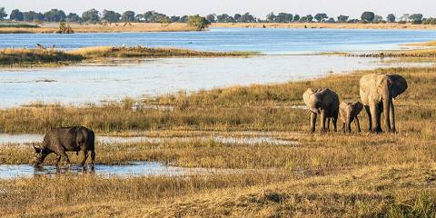 7-Day Botswana Full Serviced Camping Safari - Southbound