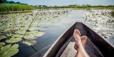 10-Day Okavango Delta, Caprivi, Chobe & Vic Falls Camping
