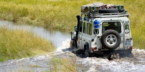 3-Day Zanzibar Selous Zanzibar Last Minute Fly-in Safari