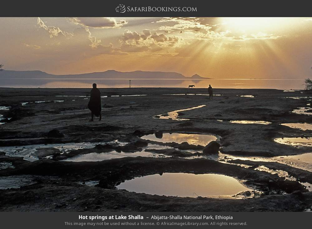 Hot springs at Lake Shalla in Abijatta-Shalla National Park, Ethiopia