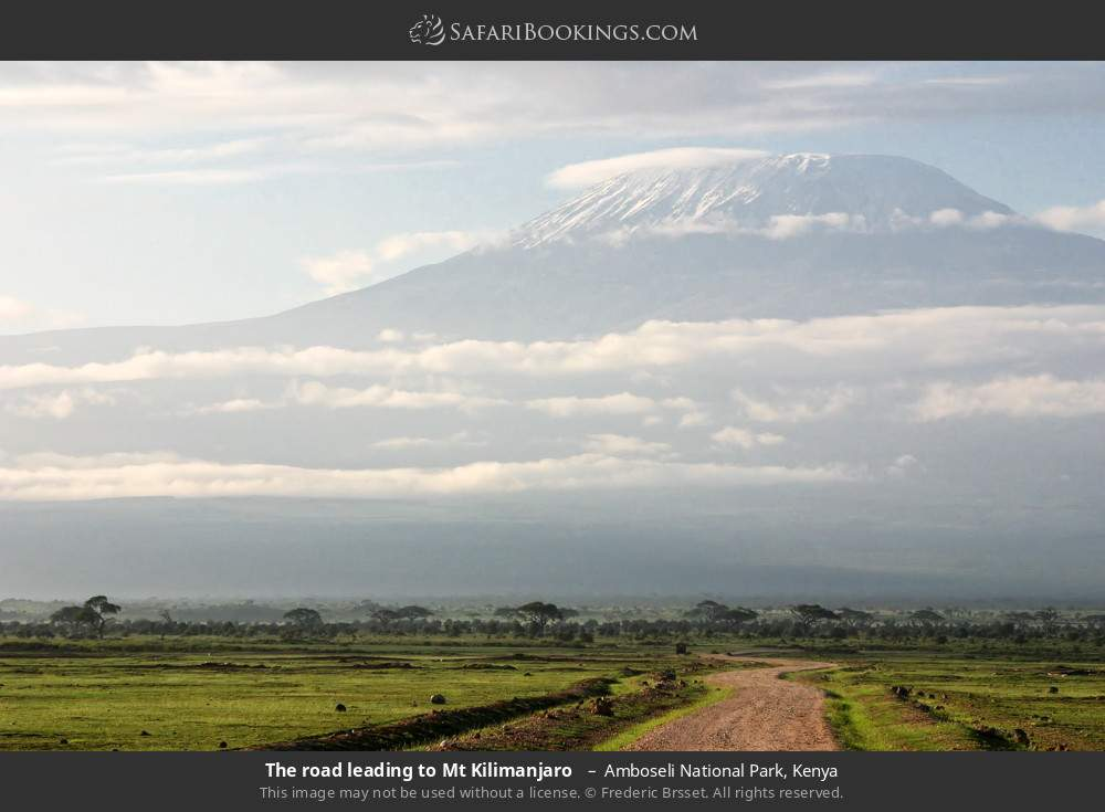 The road leading to Mount Kilimanjaro  in Amboseli National Park, Kenya