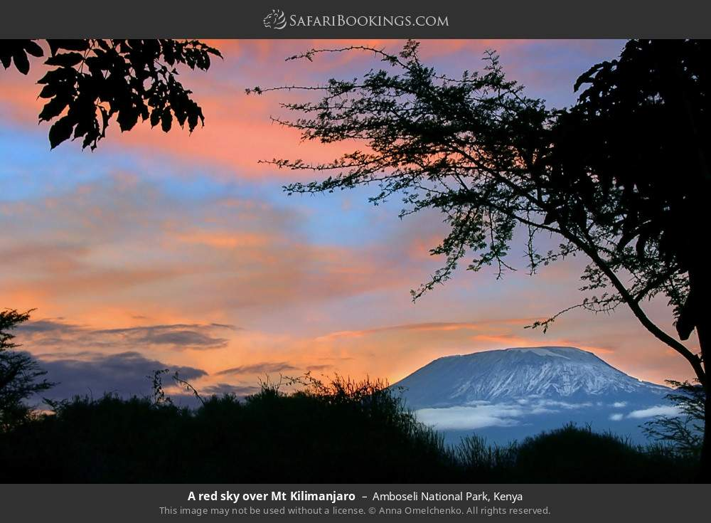 A red sky over Mount Kilimanjaro in Amboseli National Park, Kenya
