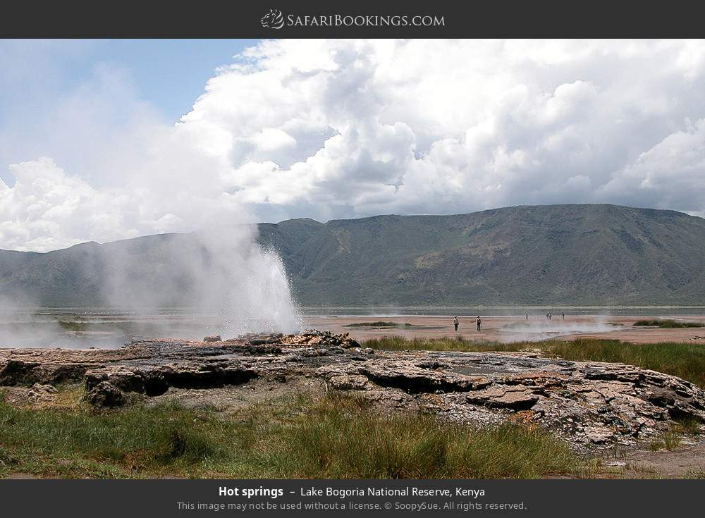 Hot springs in Lake Bogoria National Reserve, Kenya