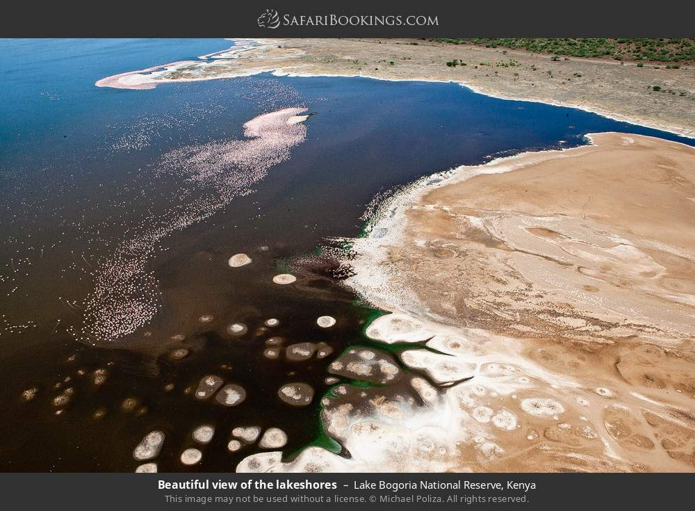 Beautiful view of the lake shores in Lake Bogoria National Reserve, Kenya
