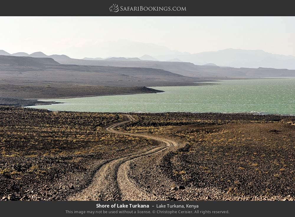 Shore of Lake Turkana in Lake Turkana, Kenya
