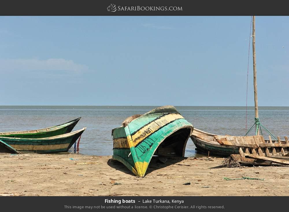 Fishing boats in Lake Turkana, Kenya