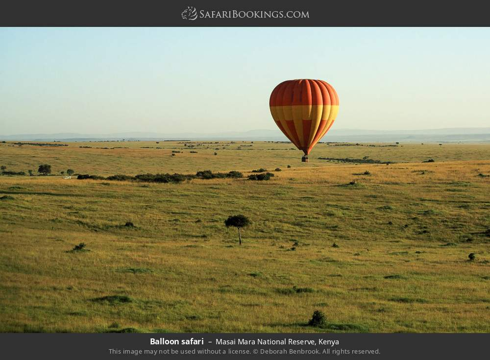Balloon safari in Masai Mara National Reserve, Kenya
