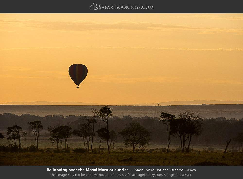 Ballooning over the Masai Mara at sunrise in Masai Mara National Reserve, Kenya
