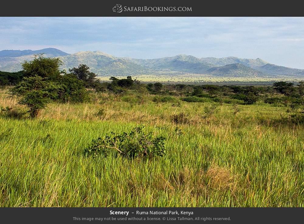 Scenery in Ruma National Park, Kenya