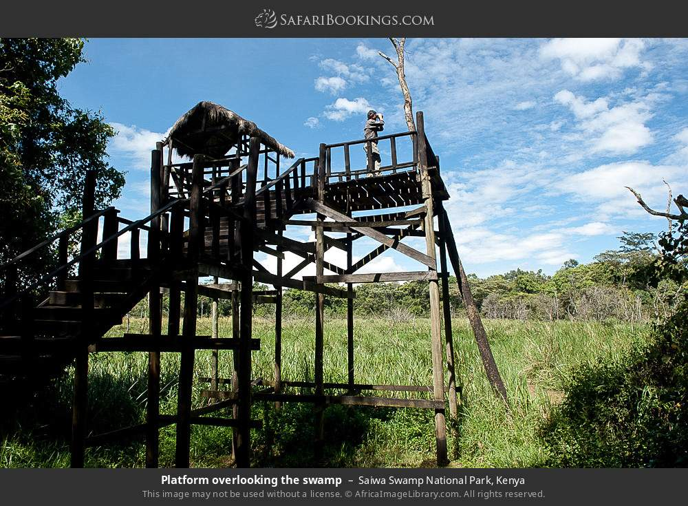 Platform overlooking the swamp in Saiwa Swamp National Park, Kenya