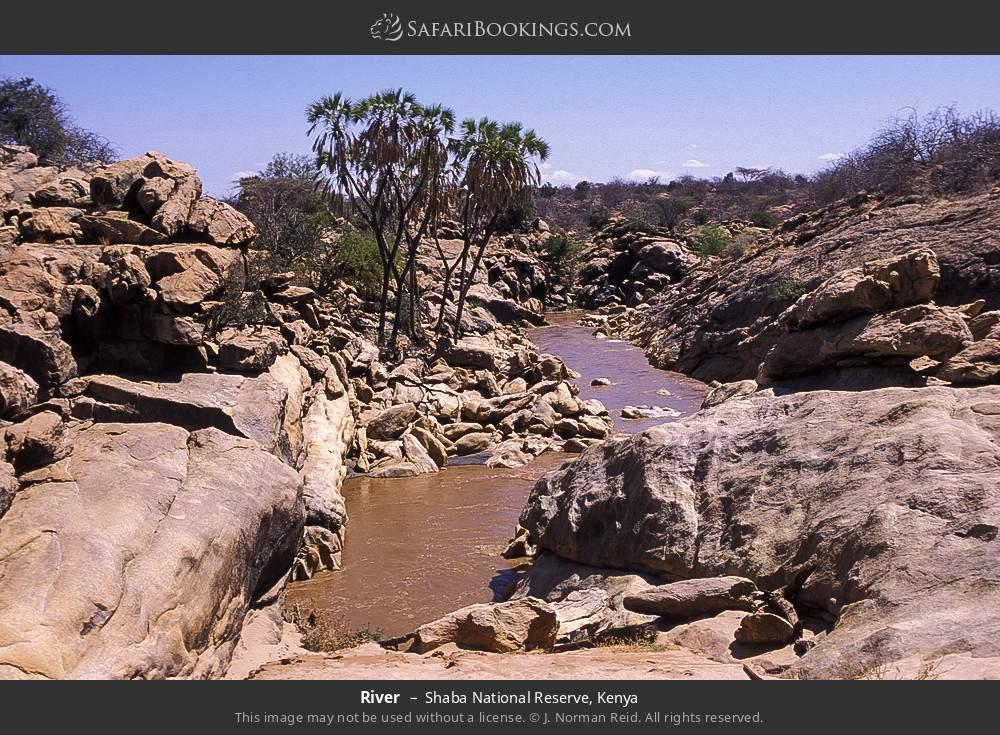 River in Shaba National Reserve, Kenya