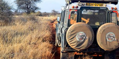 8-Day Midrange Budget - Best of Kenya & Tanzania
