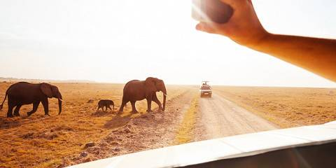 5-Day Samburu NR & Sweetwaters -Luxury-Landcruiser
