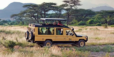 5-Day Masai Mara Covid Special Offer Pricing