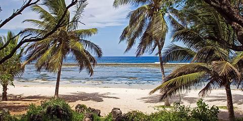 Amboseli, Tsavo & Diani Beach