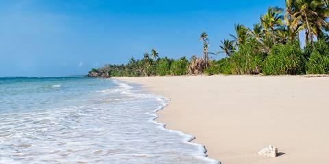 4-Day Bush to Beach Standard Luxury Safari