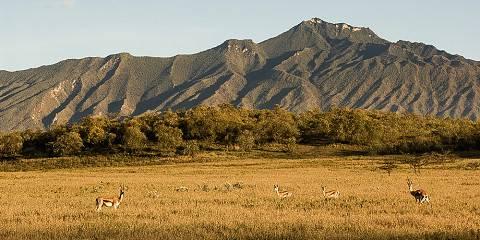 3-Day Maasai Mara Mid Range Kenya Safari