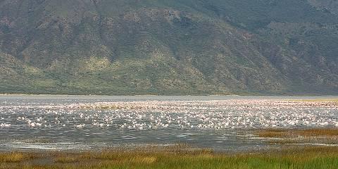 3-Day Ol Pejeta Sweet Waters Tented Camp Fly in Package
