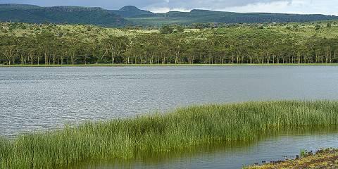 5-Day Lake Nakuru, Masai Mara Budget Safari