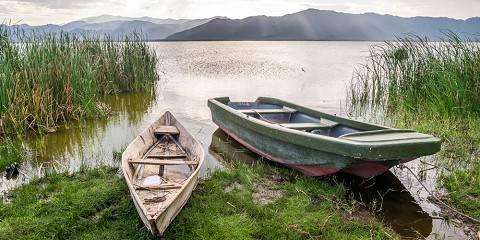 1-Day Trip to Lake Naivasha