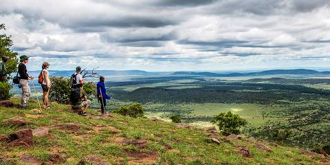 4-Day Masai Mara Only with Walking Safari Experience
