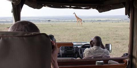 8-Day Thrilling Mara, L Nakuru, L Naivasha, Tsavo West