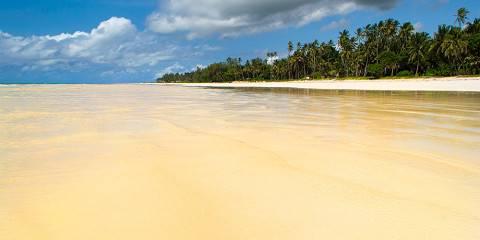 9-Day Kenyas Best Value Mara and Diani Beach