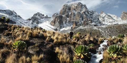 5-Day Up Kenya's Tallest Mountain ~ Mount Kenya