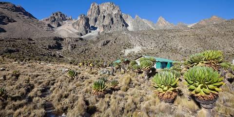 4-Day Mt Kenya Trekking Sirimon Route down Chogoria