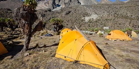 4-Day Mount Kenya Trekking Adventure