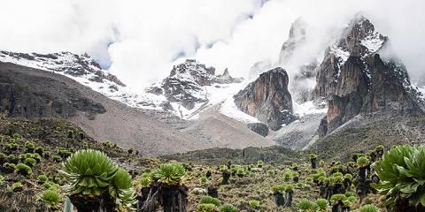 5-Day Mt Kenya Trekking -Sirimon down Chogoria