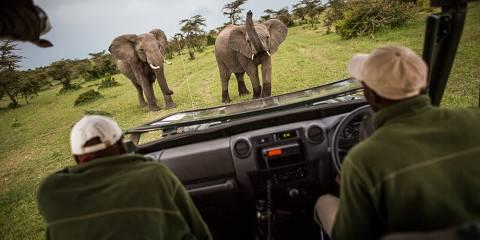 5-Day Kenya Private Budget Safari