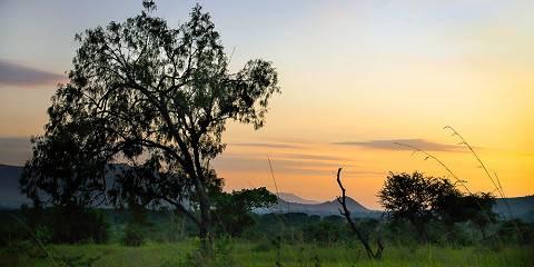 3-Day Safari Maasai Mara