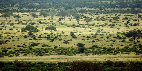 6-Day Amboseli Nakuru Naivasha Mara Lodge Joining Tour