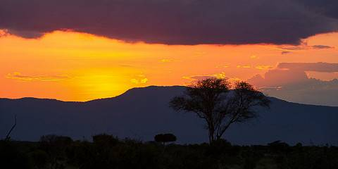 8-Day Amboseli/the Ark/Samburu/Lake Nakuru/Maasai Mara