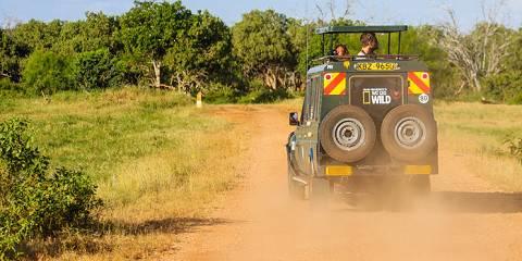 3-Day Amboseli NP Mid-Range Safari Tour from Nairobi