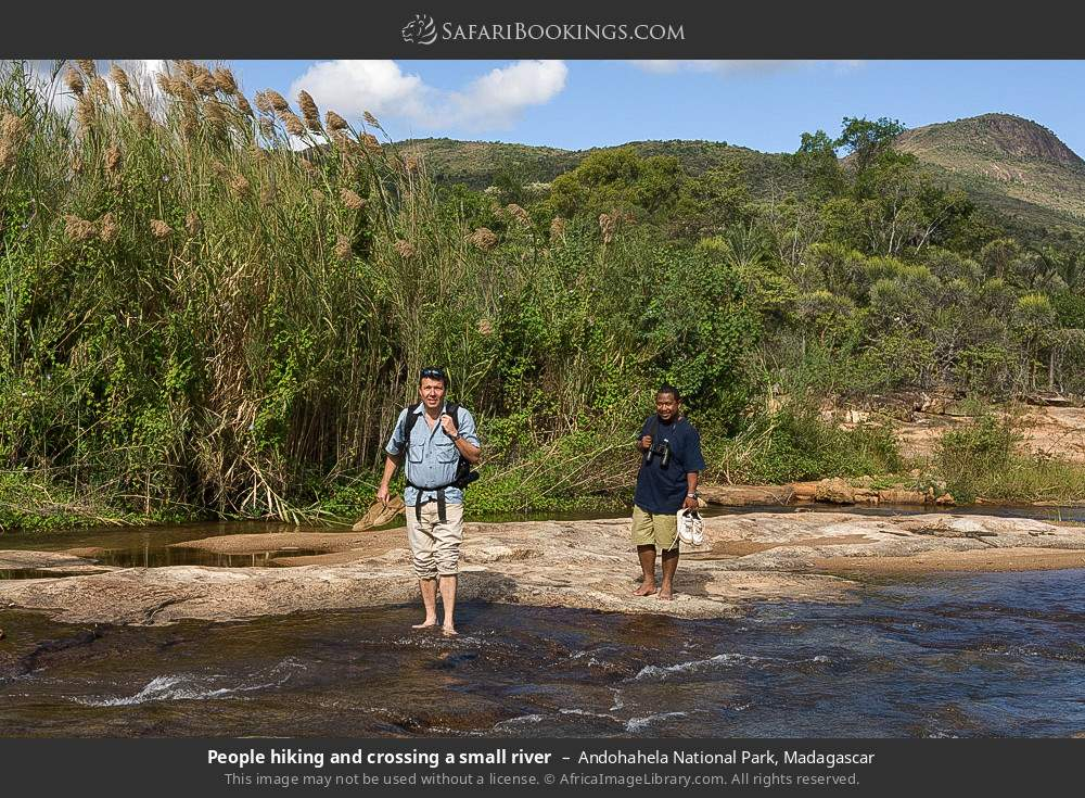 Tourists hiking and crossing a small river in Andohahela National Park, Madagascar