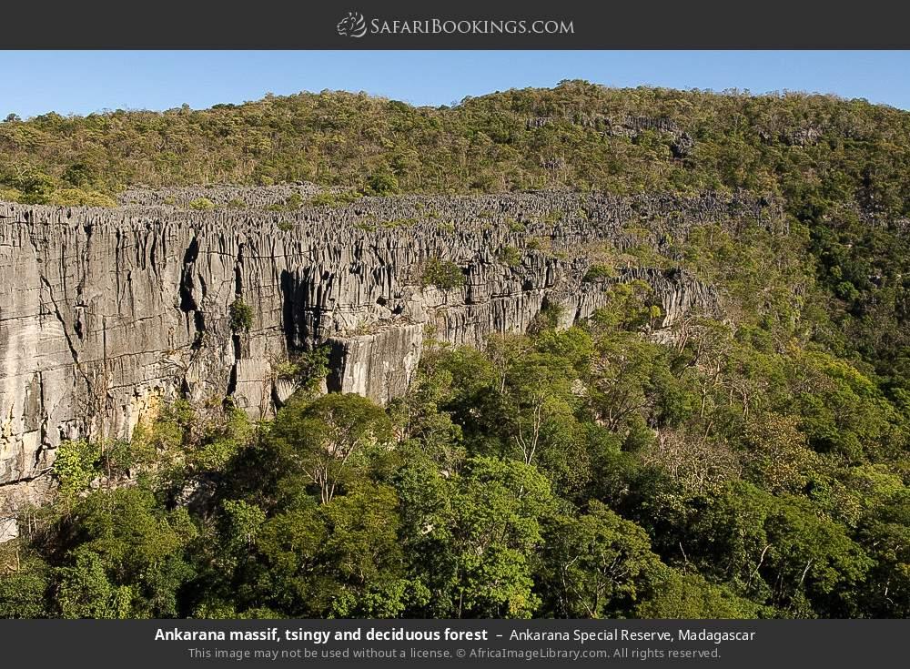 Ankarana massif, tsingy and deciduous forest in Ankarana Special Reserve, Madagascar
