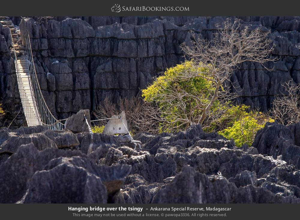 Hanging bridge over the tsingy in Ankarana Special Reserve, Madagascar