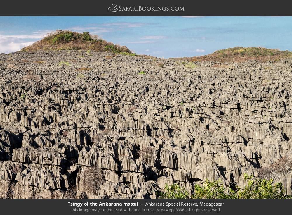 Tsingy of the Ankarana massif in Ankarana Special Reserve, Madagascar
