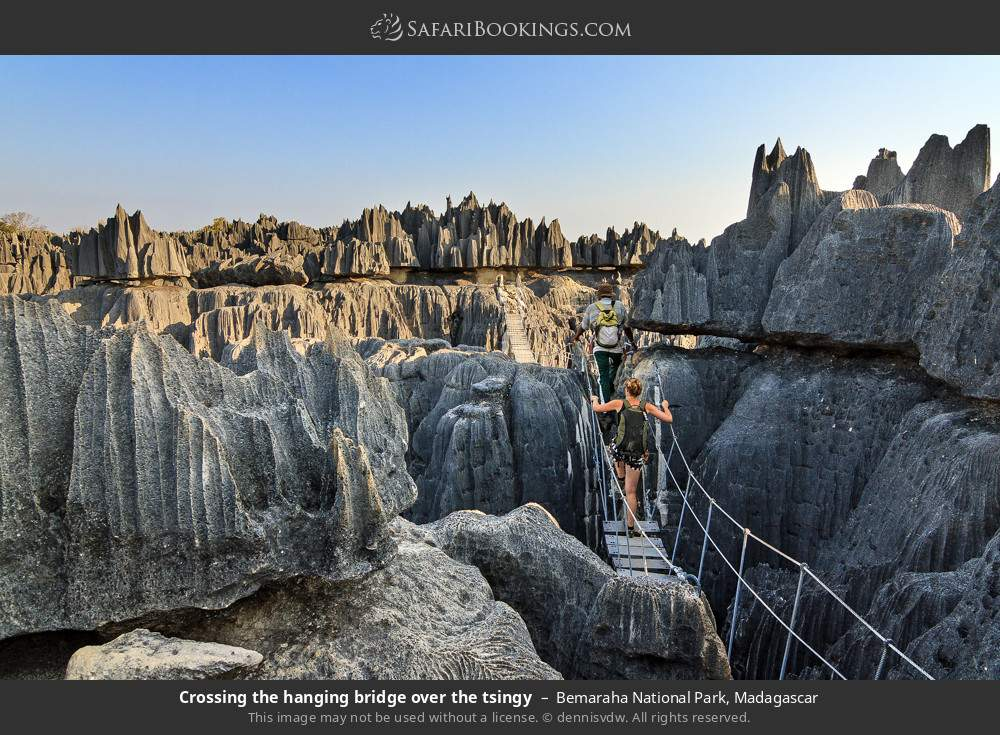 Tourist on hanging bridge  over the tsingy in Bemaraha National Park, Madagascar