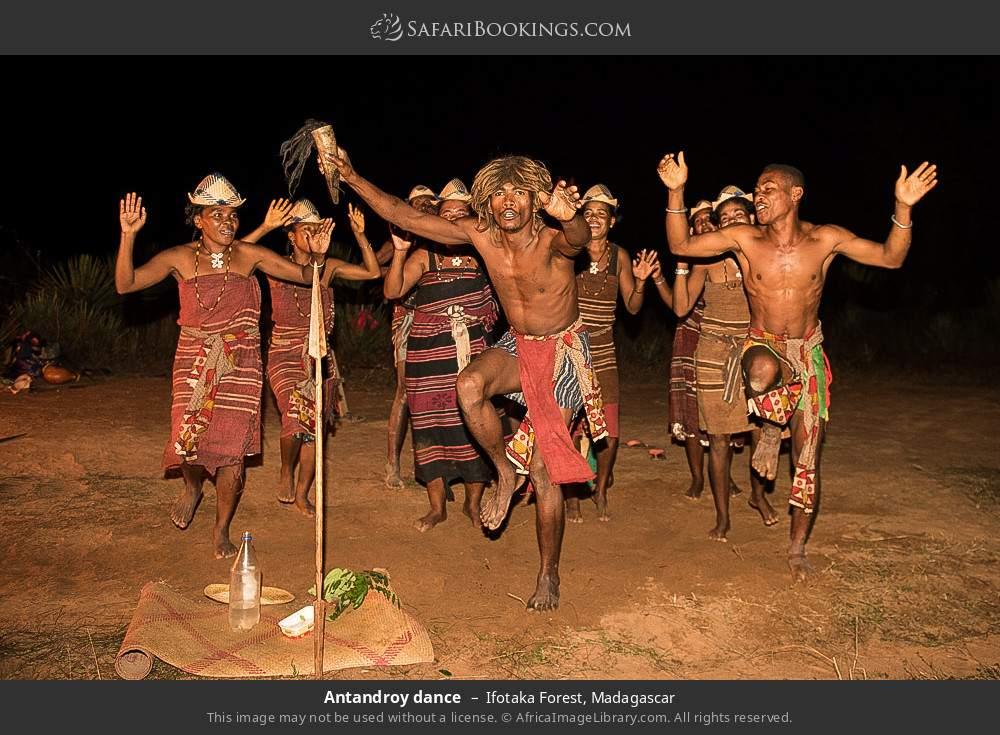 Antandroy dance in Ifotaka Forest, Madagascar